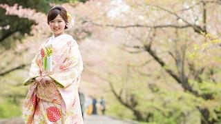 TANAN丹庵 色打掛「篭目菊紋様」