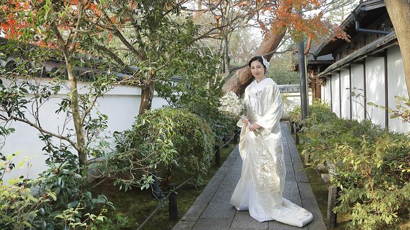 白無垢「桜草」