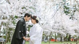 上賀茂神社さんご結婚式 TANAN丹庵